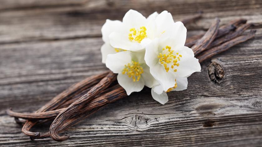 Cateva detalii despre vanilie